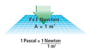 Newton_EN.jpg