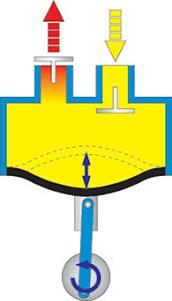 http://4.bp.blogspot.com/_8H0W-6Yoqp0/SVXzAQnjFkI/AAAAAAAAAWI/6J71RNkSiIU/s320/Diaphragm.jpg
